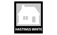 Local website design company
